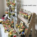 ハトコネイベントvol.5 「flower mail coco」